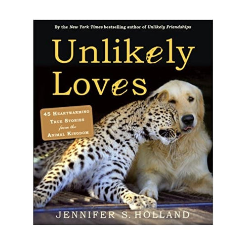 Unlikely Loves Book