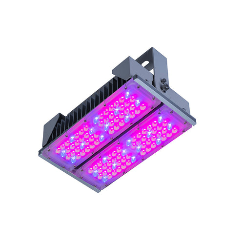 Photon 2000™ Series LED Grow Light for Horticulture