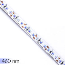 SimpleColor™ Blue LED Strip Lights