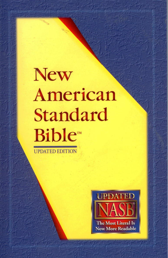 BR-008 - Holy Bible paperback edition