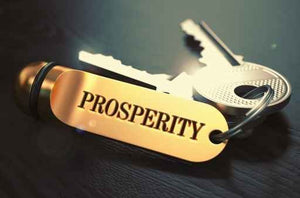 Prosperity Truth Packet SPECIAL