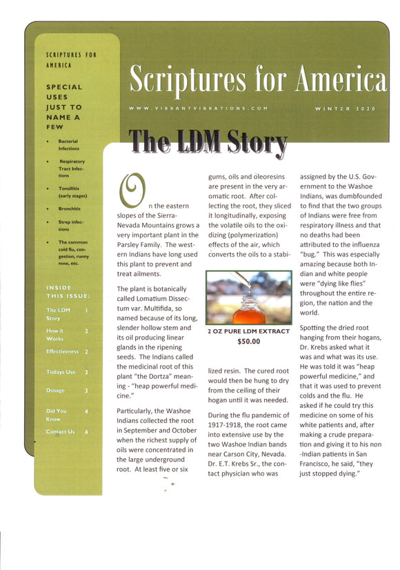 The LDM Story Pamphlet