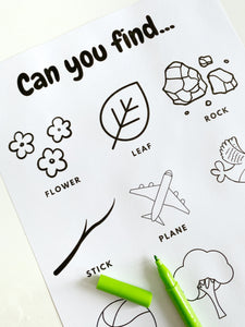 """Can you find..."" Worksheets"