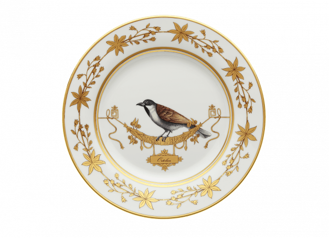 Richard Ginori - Volière Dinner Plates