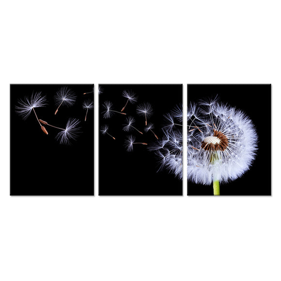 Dandelion Canvas - My Home Wall