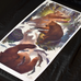 Bear Forest - LIMITED EDITION Fine Art Print