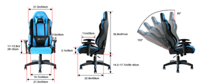 EWin CLC Ergonomic Gaming Office Chair with Pillows - Racer Gaming Chairs