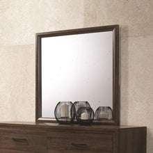 Load image into Gallery viewer, MIRROR 205324-COA