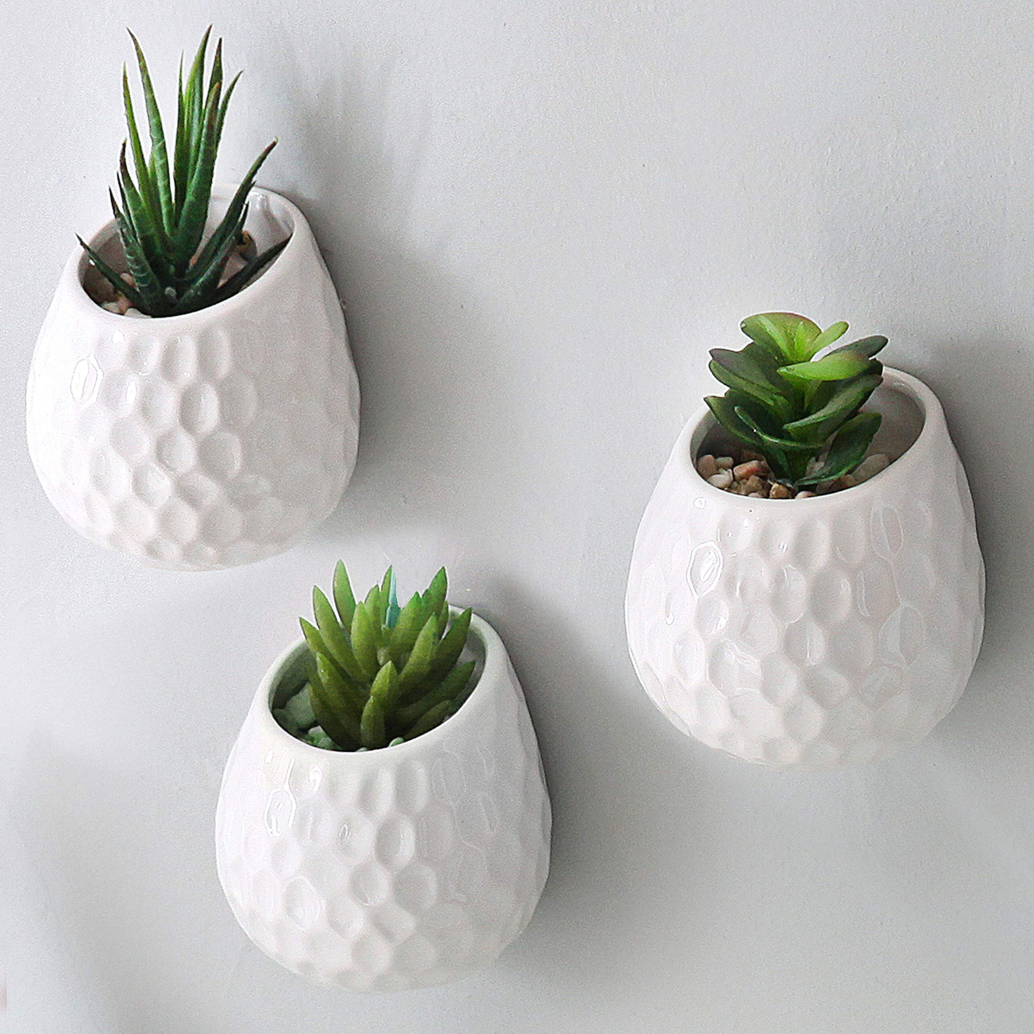 Mygift 4 Inch Golf Ball Inspired White Ceramic Wall Mountable Mini Pla Succulent Land