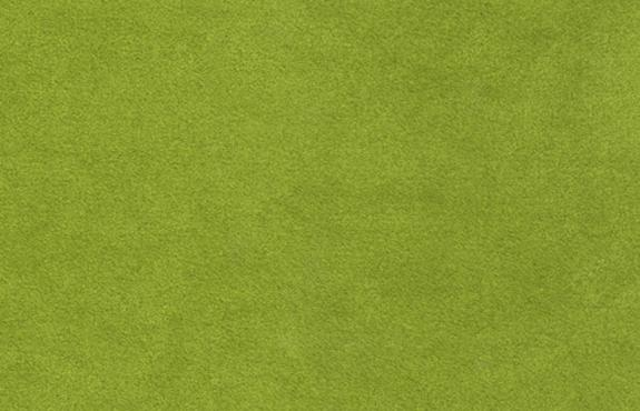 Sensuede Olive Sample