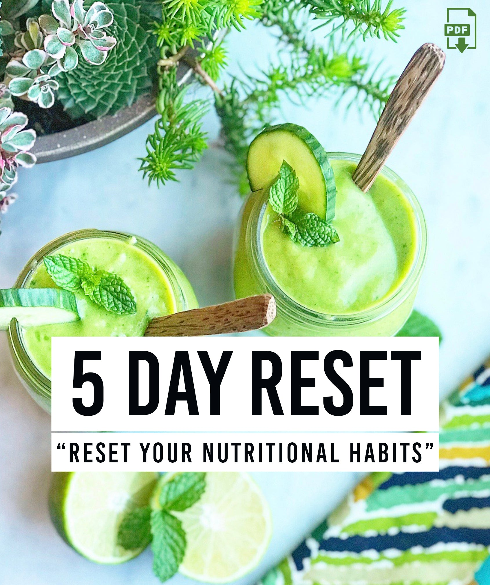 5 DAY RESET PLAN