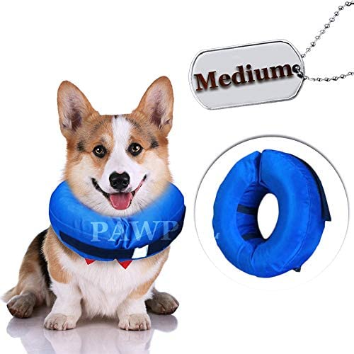 Recovery Waterproof pet Collar
