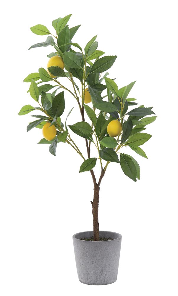 "14"" Round x 28""H Faux Lemon Tree in Cement Pot"