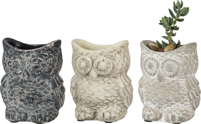 Cement Owl Planter - Set of 3