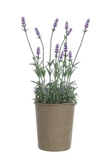 "13-1/2""H Faux Lavender in Paper Pot"