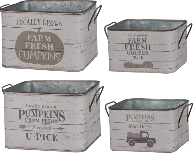 Tin Buckets - Fresh Pumpkins and Gourds : Set of 2