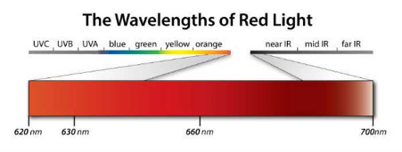 The wavelengths of red light