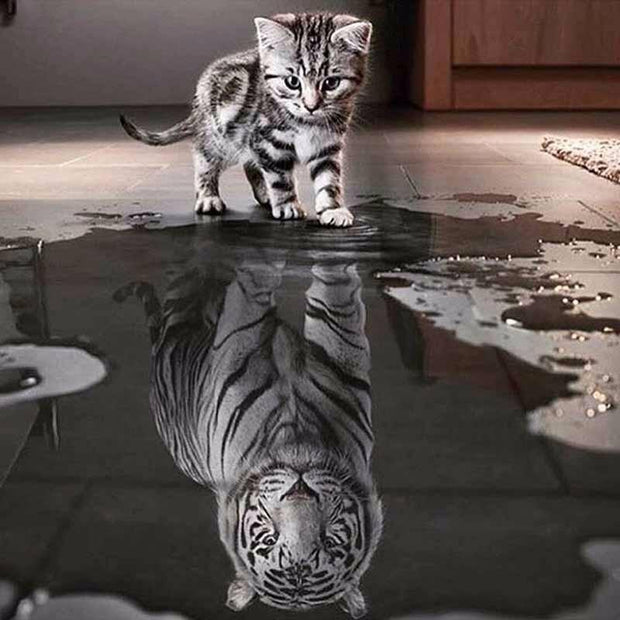 XXL - Diamond Painting - Baby-Tiger