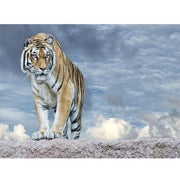 XXL - Diamond Painting - Allein Tiger