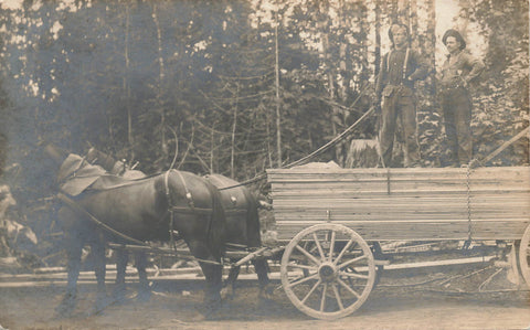 Workers Pose On Loaded Horse Drawn Wagon At Logging Site. RPPC Postcard