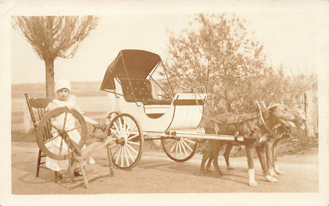 Child Poses With Dog Drawn Carriage. Real Photo Postcard