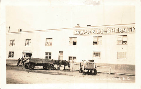 British Columbia. Dawson Co-Operators Building With Horse And Cart. Canada RPPC Postcard