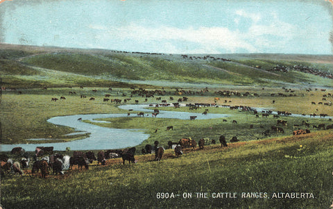 "Alberta. On The ""Altaberta"" Cattle Ranges. To Lambton Mills (1873-1937) Canada Postcard"
