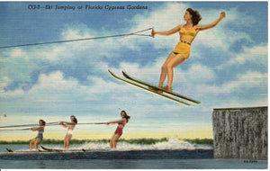 SKI JUMPING AT FLORDIA CYPRESS GARDENS FOUR OF THE BEST ON WATER SKI'S U.S. LINEN POSTCARD