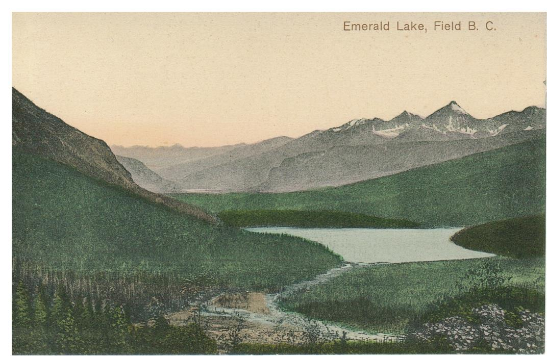 B.C. FIELD EMERALD LAKE CANADA POSTCARD