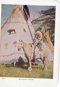 INDIGENOUS CHIEF OF THE STONEY NATION ON MULTI COLOURED FOLKARD POSTCARD CONTINENTIAL SIZE CANADA