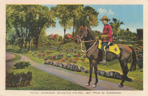 Royal Canadian Mounted Police Officer On Horseback. Canada Postcard