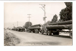 LOGS AND LOGGING TRUCKS ON PARADE RPPC POSTCARD GOING TO SAWMILL PHOTO 1919 LAWS