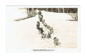 Vancouver BC. RPPC Dog Sled Team Grouse Mountain Canada Postcard