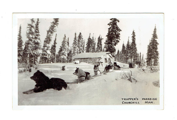 Churchill, MB. Postcard. Dog Sled Team. Trappers Paradise. Canada.