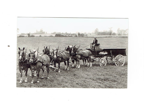 "Vintage Brewery RPPC Postcard. ""Okeefe's"" Wagon Pulled By Horse Team."