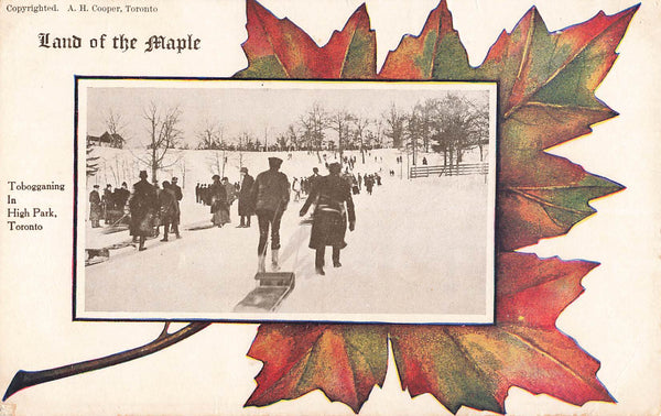 Toronto, ON. Tobogganing In High Park. Land Of Maple Series. Patriotic Postcard. Canada