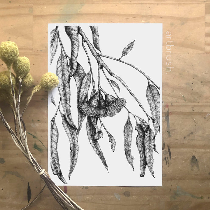 artbrush 'Black & White Botanical 1' print