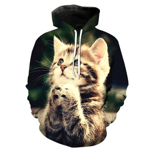 Cute Cats 3D Painted Hoodie - Novel3d