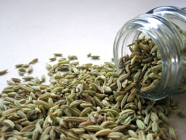 3 Fennel Benefits for Health & Wellness
