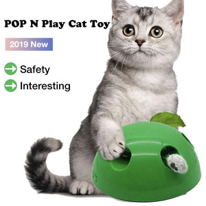 New Cat Toy Pop Play Pet Toy Ball POP N PLAY Cat Scratching Device Funny Traning Cat Toys For Cat Sharpen Claw Pet Supplies - Pop Up Life