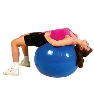 Buy Thera-Band Exercise Balls online used to treat Physical Therapy - Medical Conditions