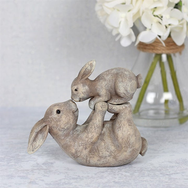 Some Bunny Loves You Ornament