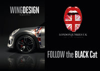 """Follow the Black Cat"" Mini Design Folie Wing"