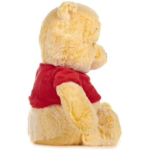 Snuggletime 30 cm Pooh Bear from Disney Winnie the Pooh