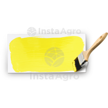 Load image into Gallery viewer, Yellow Glue Indefinido