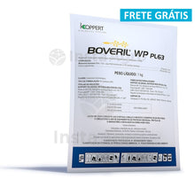 Load image into Gallery viewer, Boveril Wp Pl63 Pulverização