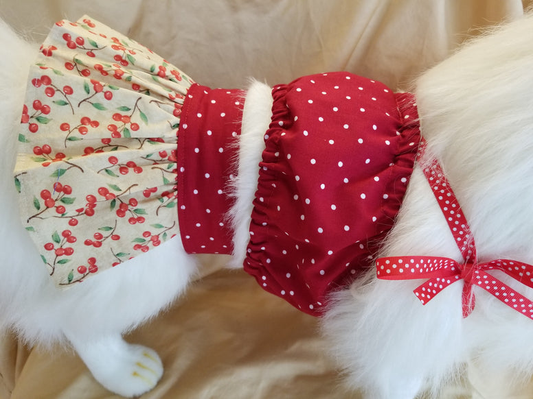 Red Cherry Two Piece Dog Dress Skirt & Top