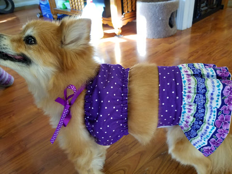 Purple Two Piece Dog Dress Skirt & Top