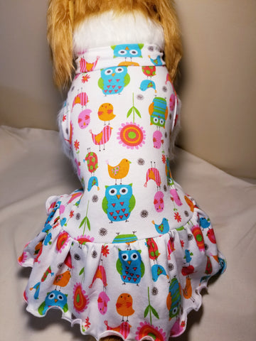 Pretty Birds and Owls Dog Dress