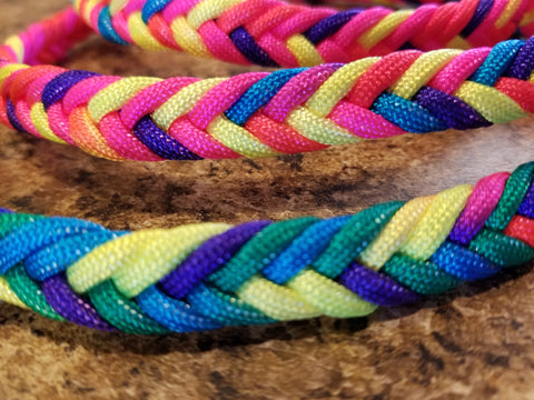 Bold and Colorful Rainbow Braided Paracord Dog Leash